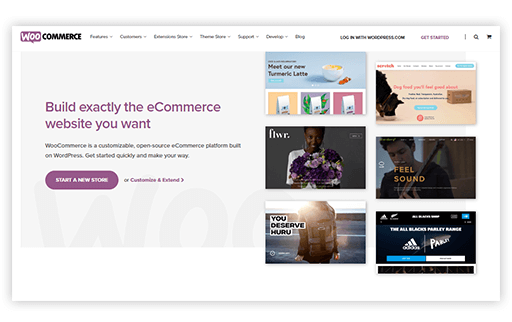 FrogOnline_Shopify_Vs_Woocommerce_Article_Images_Woo_templates